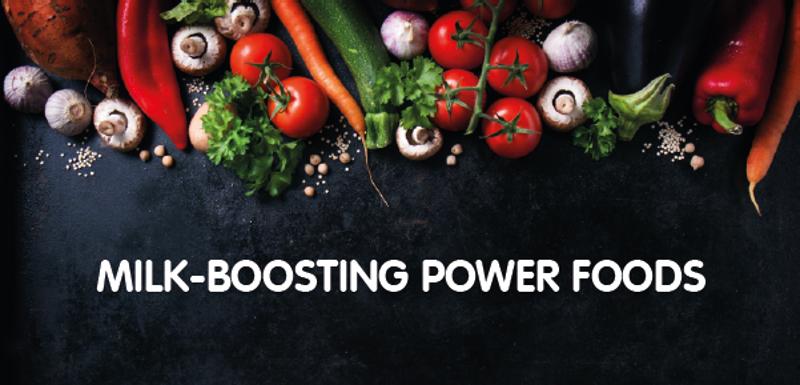 Power Food For Vegetarian Breastfeeding Mothers(Part 2)
