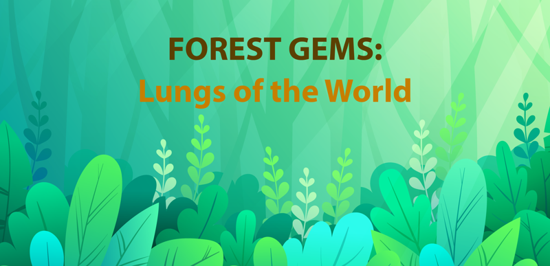 Forest Gems: Lungs of the World